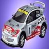 Peugeot 206 Evolution rally car